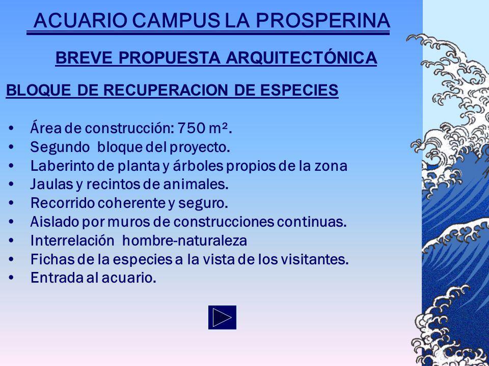 BREVE PROPUESTA ARQUITECTÓNICA BLOQUE DE RECUPERACION DE ESPECIES Área de construcción: 750 m².