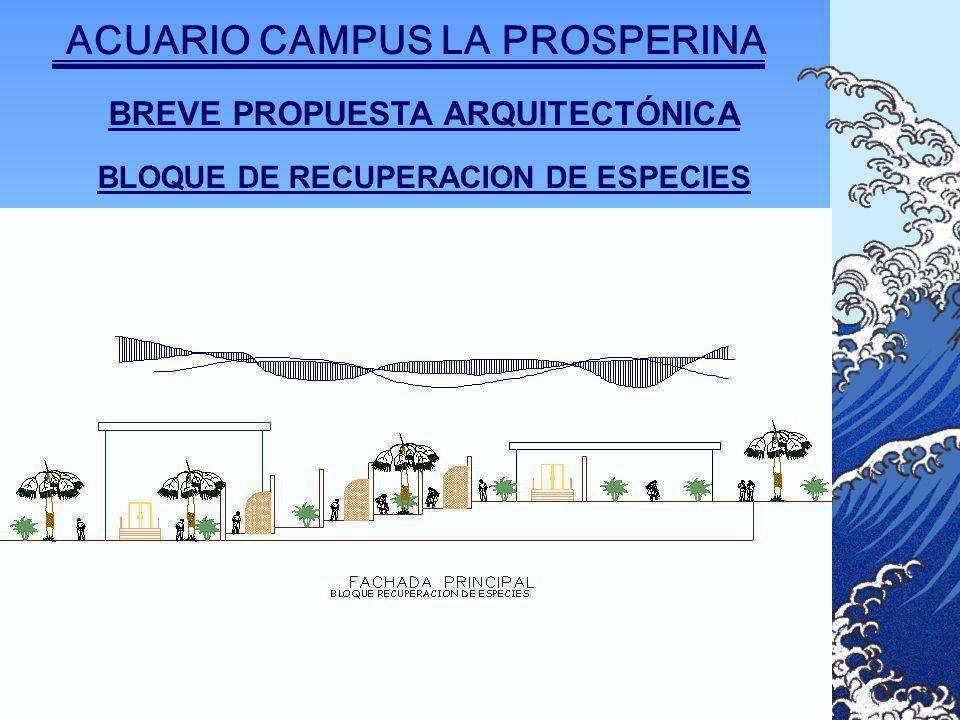 BREVE PROPUESTA ARQUITECTÓNICA BLOQUE DE RECUPERACION DE ESPECIES ACUARIO CAMPUS LA PROSPERINA