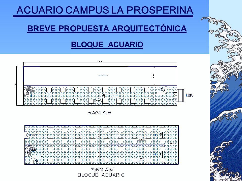 BREVE PROPUESTA ARQUITECTÓNICA BLOQUE ACUARIO ACUARIO CAMPUS LA PROSPERINA