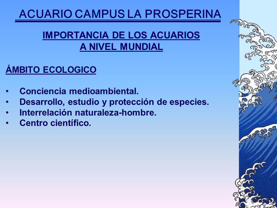 IMPORTANCIA DE LOS ACUARIOS A NIVEL MUNDIAL ÁMBITO ECOLOGICO Conciencia medioambiental.