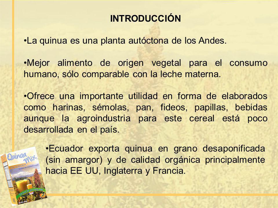 INTRODUCCIÓN La quinua es una planta autóctona de los Andes. Mejor alimento de origen vegetal para el consumo humano, sólo comparable con la leche mat