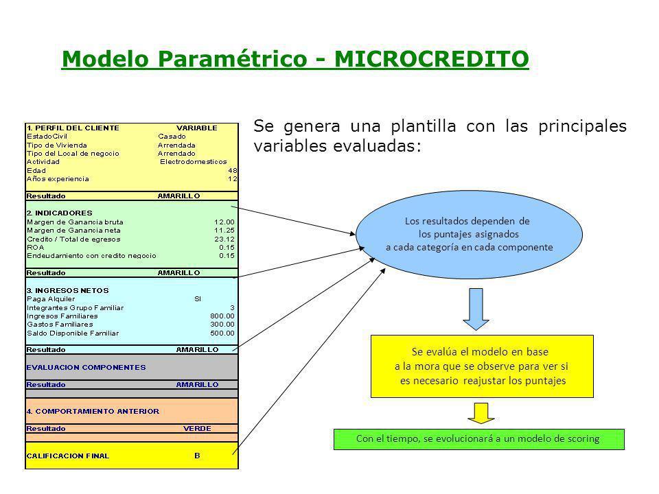 Ec. Ramiro Estrella C. Gestión de Riesgo Se genera una plantilla con las principales variables evaluadas: Los resultados dependen de los puntajes asig