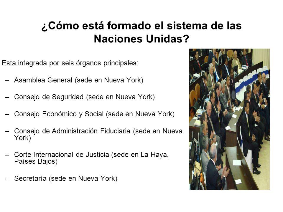 ¿Cómo está formado el sistema de las Naciones Unidas? Esta integrada por seis órganos principales: –Asamblea General (sede en Nueva York) –Consejo de