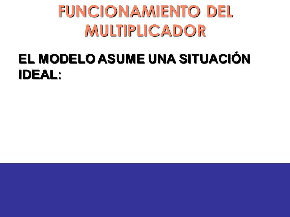 FUNCIONAMIENTO DEL MULTIPLICADOR EL MODELO ASUME UNA SITUACIÓN IDEAL: EL MODELO ASUME UNA SITUACIÓN IDEAL: