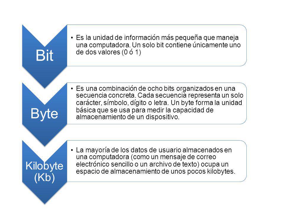 Bit Es la unidad de informaci ó n m á s peque ñ a que maneja una computadora. Un solo bit contiene ú nicamente uno de dos valores (0 ó 1) Byte Es una