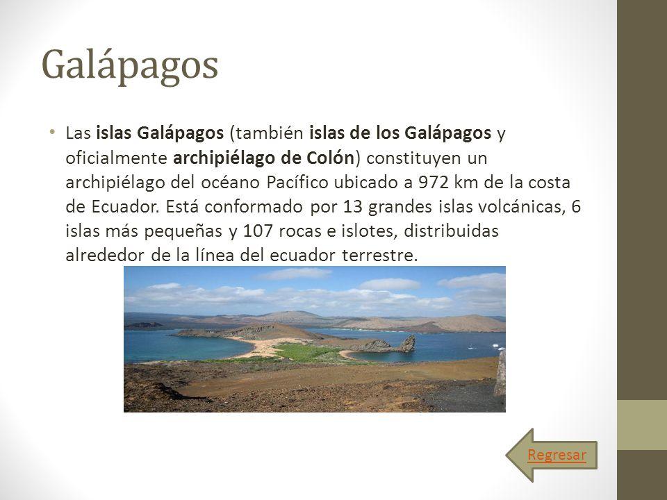 Galápagos Las islas Galápagos (también islas de los Galápagos y oficialmente archipiélago de Colón) constituyen un archipiélago del océano Pacífico ub