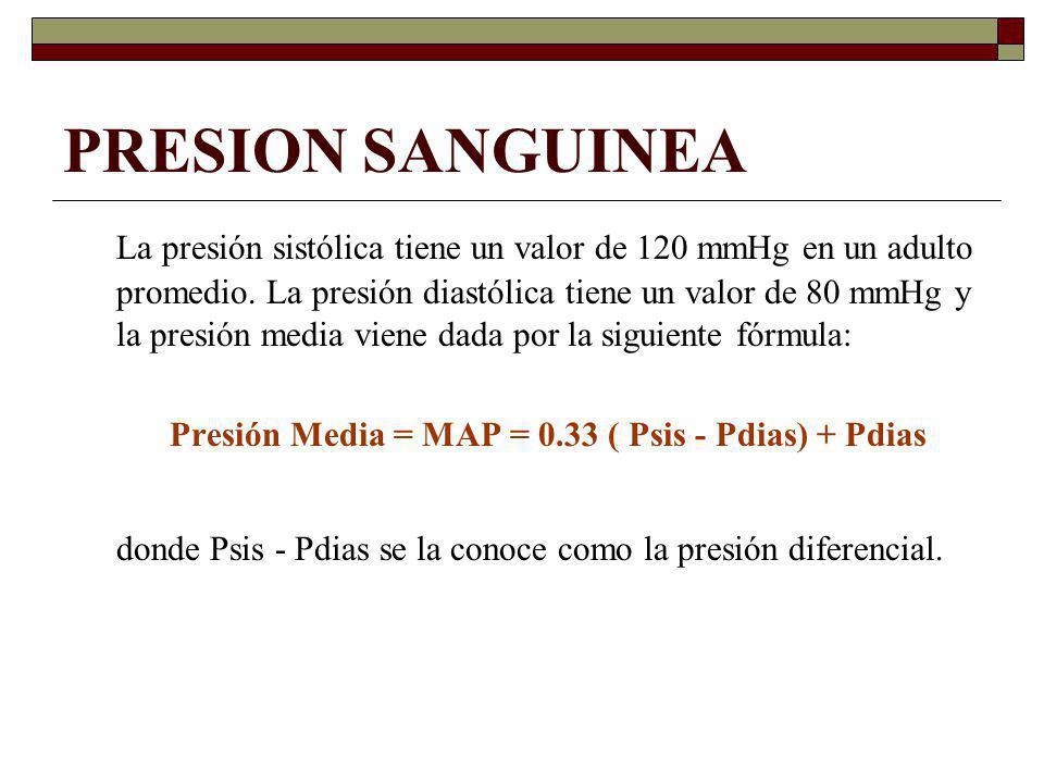 PRESION SANGUINEA La presión sistólica tiene un valor de 120 mmHg en un adulto promedio. La presión diastólica tiene un valor de 80 mmHg y la presión