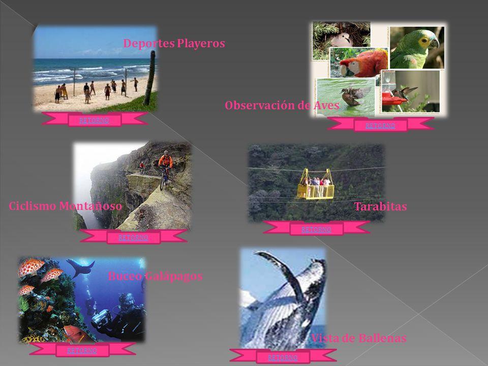 Playas Salinas Galápagos Baños de Ambato Riobamba Vilcabamba Esmeraldas RETORNO