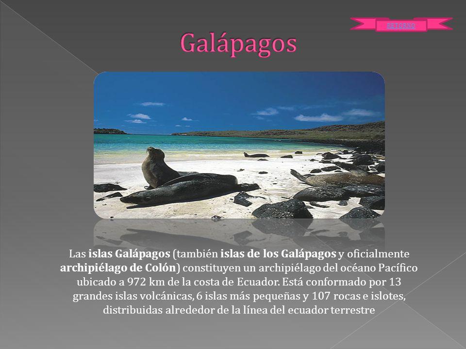 Las islas Galápagos (también islas de los Galápagos y oficialmente archipiélago de Colón) constituyen un archipiélago del océano Pacífico ubicado a 97