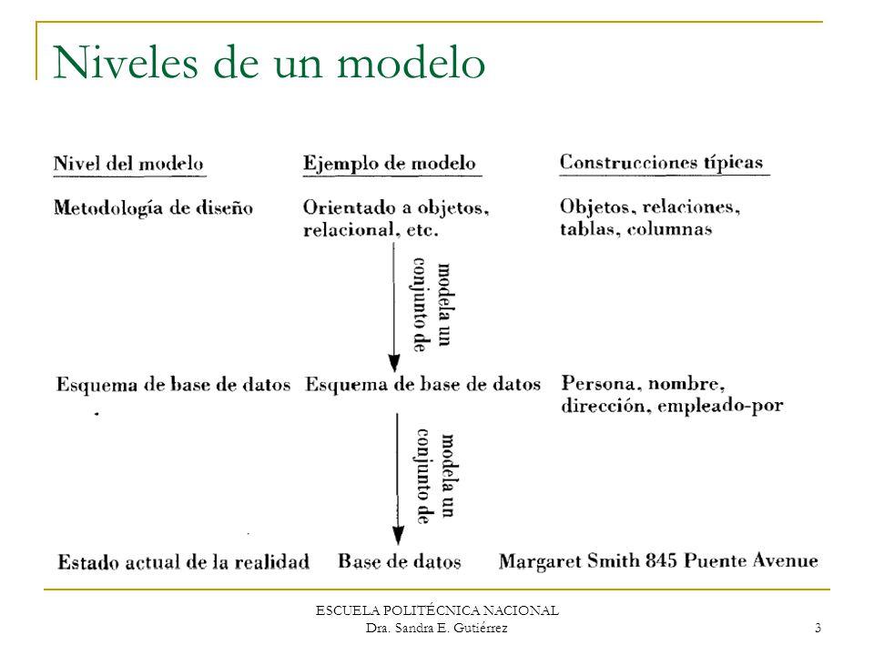 ESCUELA POLITÉCNICA NACIONAL Dra. Sandra E. Gutiérrez 3 Niveles de un modelo