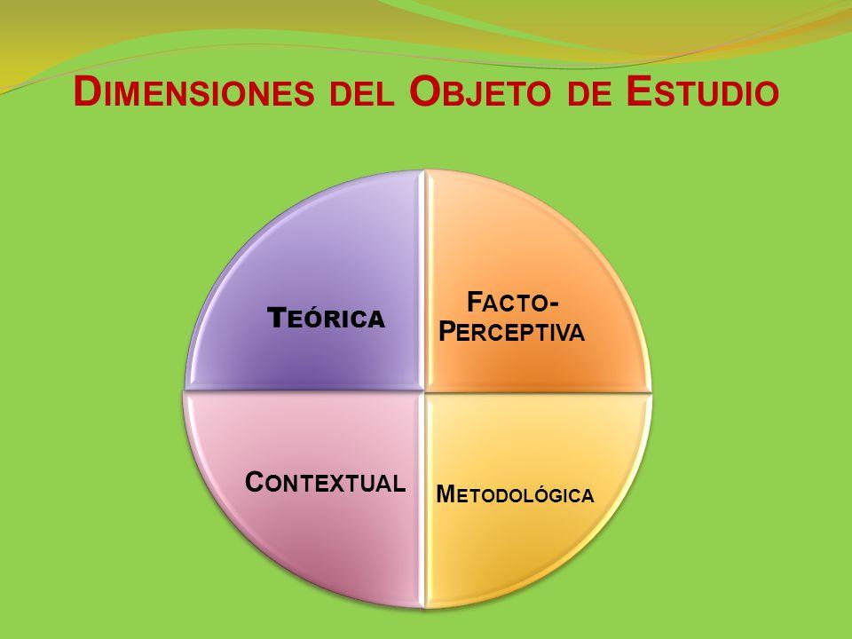 F ACTO - P ERCEPTIVA M ETODOLÓGICA C ONTEXTUAL T EÓRICA D IMENSIONES DEL O BJETO DE E STUDIO