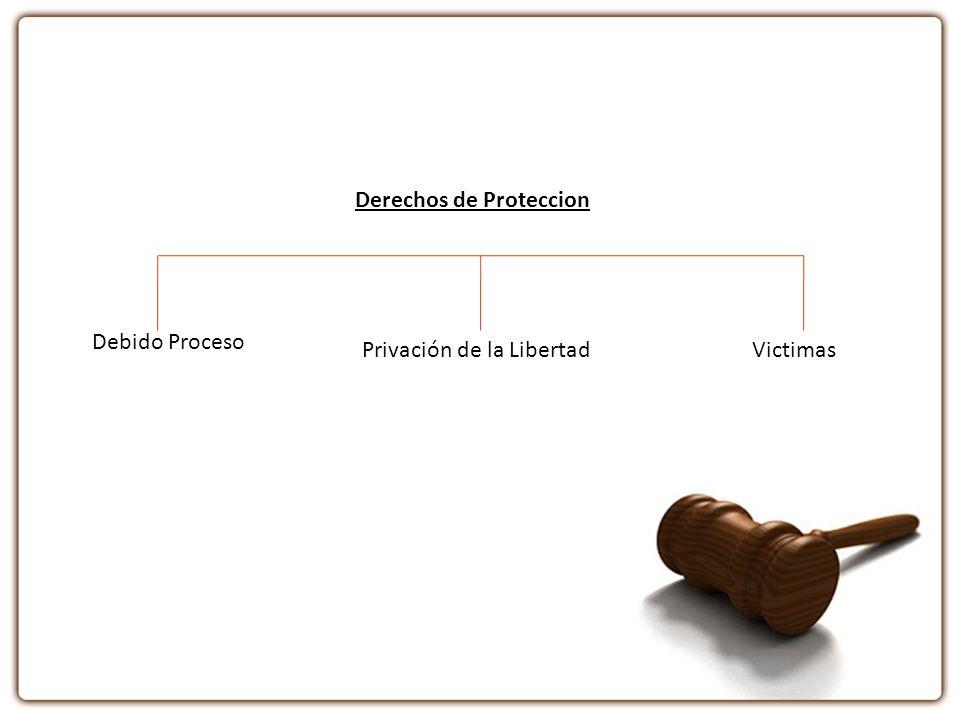 Derechos de Proteccion Debido Proceso Privación de la LibertadVictimas