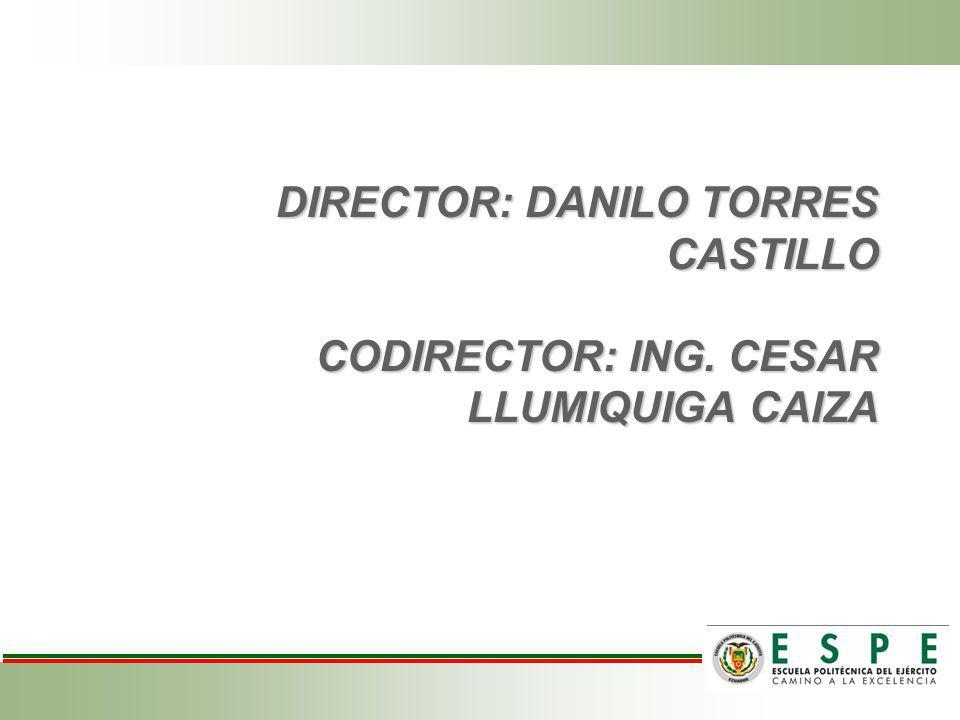 DIRECTOR: DANILO TORRES CASTILLO CODIRECTOR: ING.