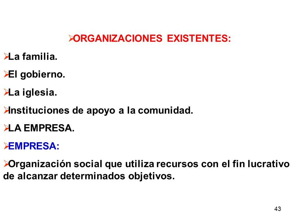 43 ORGANIZACIONES EXISTENTES: La familia.El gobierno.