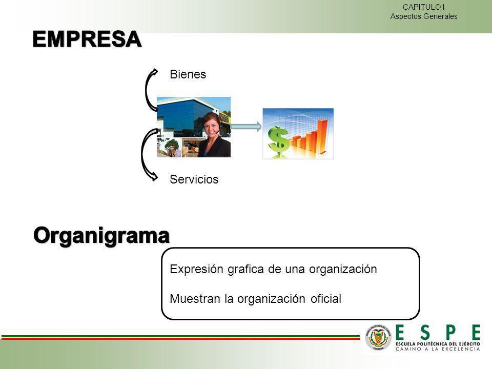 Bienes Servicios CAPITULO I Aspectos Generales Expresión grafica de una organización Muestran la organización oficial