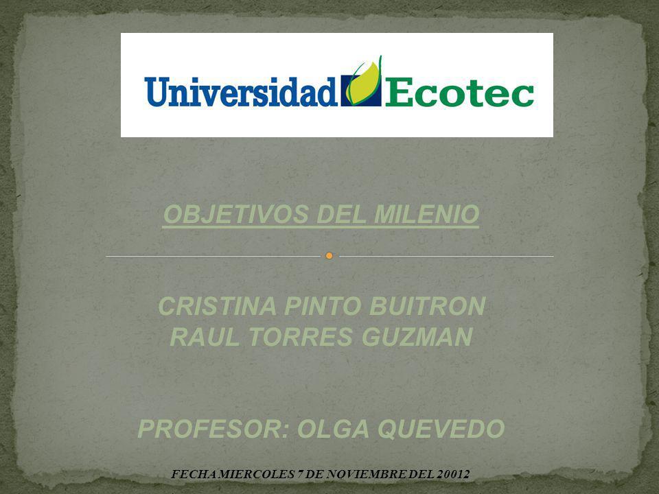 OBJETIVOS DEL MILENIO CRISTINA PINTO BUITRON RAUL TORRES GUZMAN PROFESOR: OLGA QUEVEDO FECHA MIERCOLES 7 DE NOVIEMBRE DEL 20012