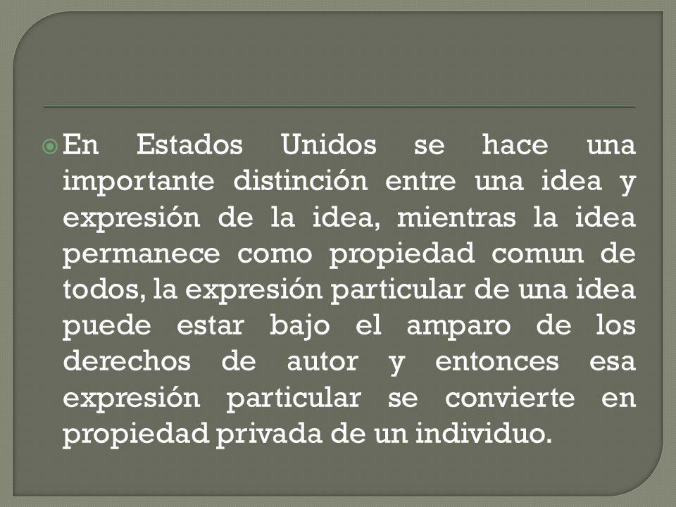 En Estados Unidos se hace una importante distinción entre una idea y expresión de la idea, mientras la idea permanece como propiedad comun de todos, la expresión particular de una idea puede estar bajo el amparo de los derechos de autor y entonces esa expresión particular se convierte en propiedad privada de un individuo.