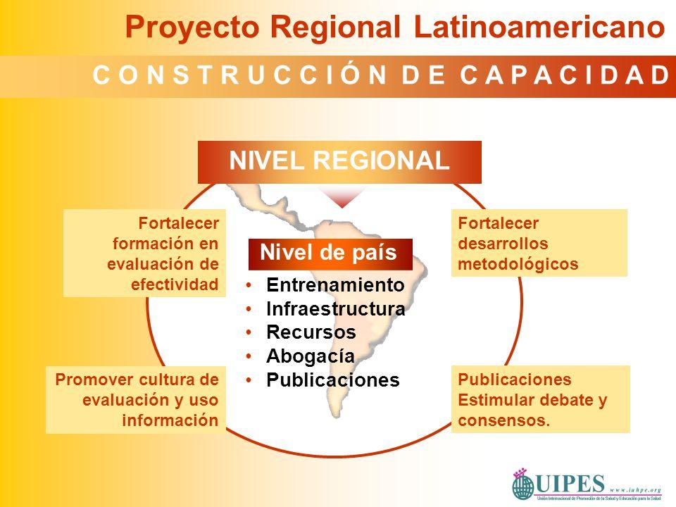 Nivel de país Entrenamiento Infraestructura Recursos Abogacía Publicaciones Fortalecer desarrollos metodológicos Publicaciones Estimular debate y cons