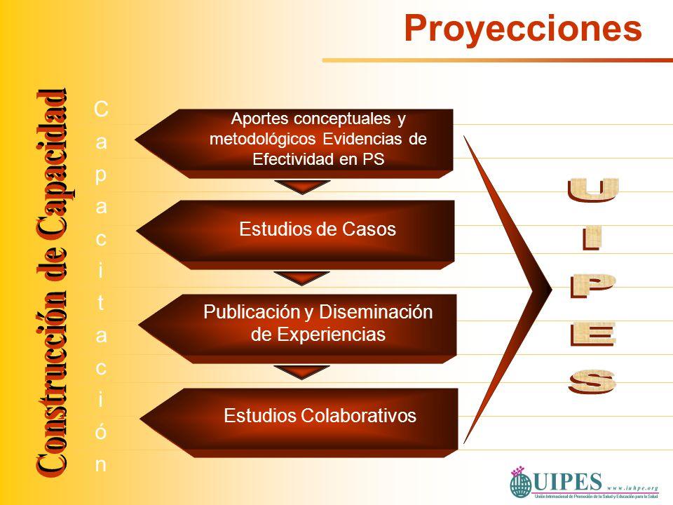 CapacitaciónCapacitación Estudios de Casos Publicación y Diseminación de Experiencias Estudios Colaborativos Aportes conceptuales y metodológicos Evid