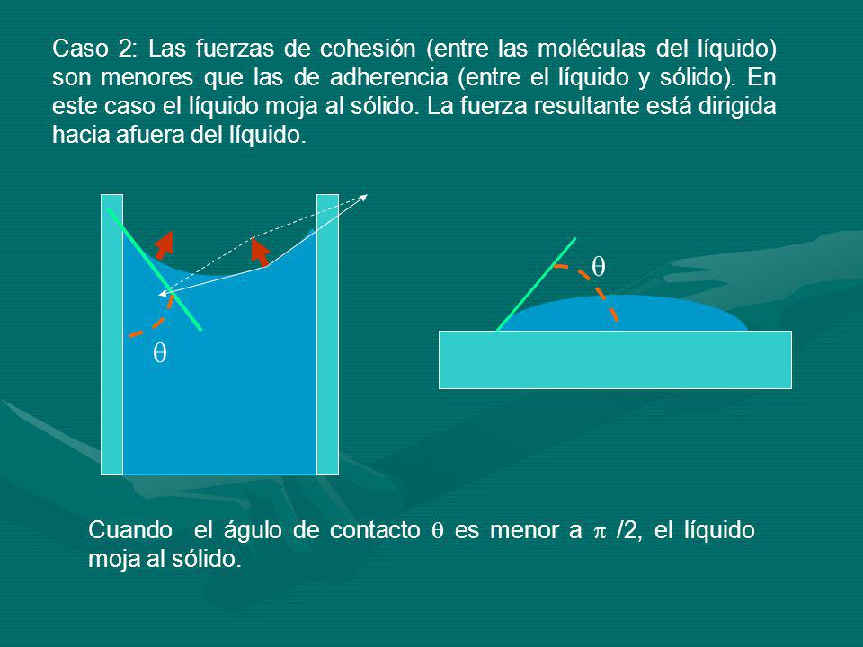 Caso 2: Las fuerzas de cohesión (entre las moléculas del líquido) son menores que las de adherencia (entre el líquido y sólido).