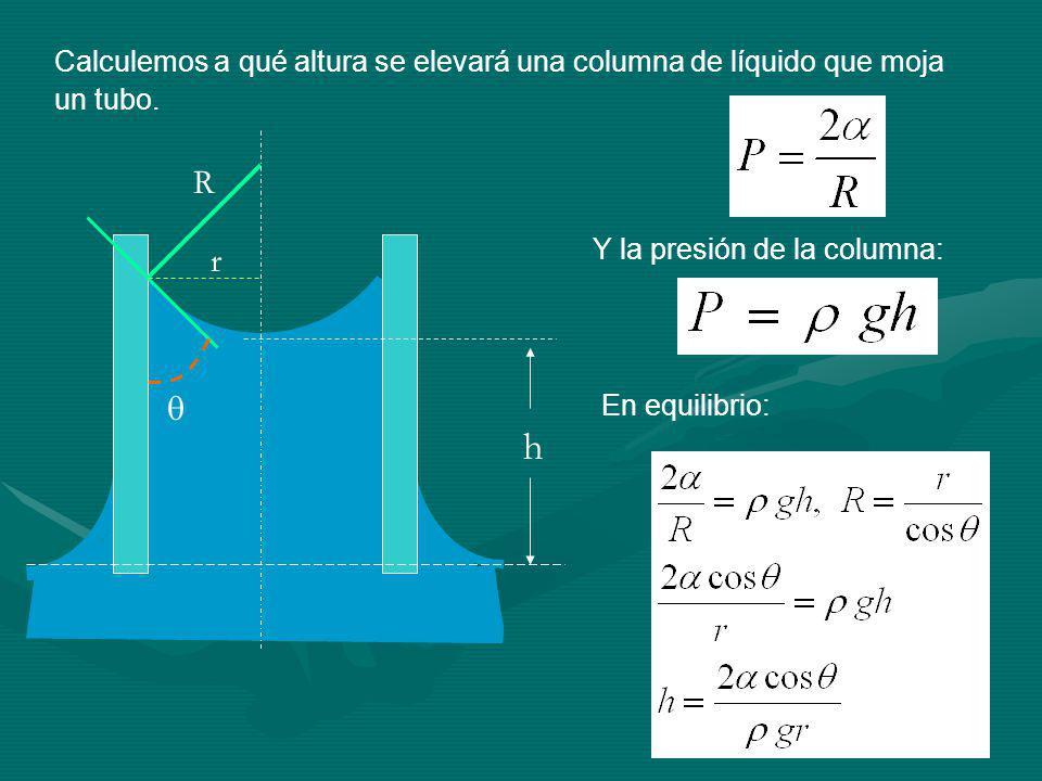h R r Calculemos a qué altura se elevará una columna de líquido que moja un tubo.