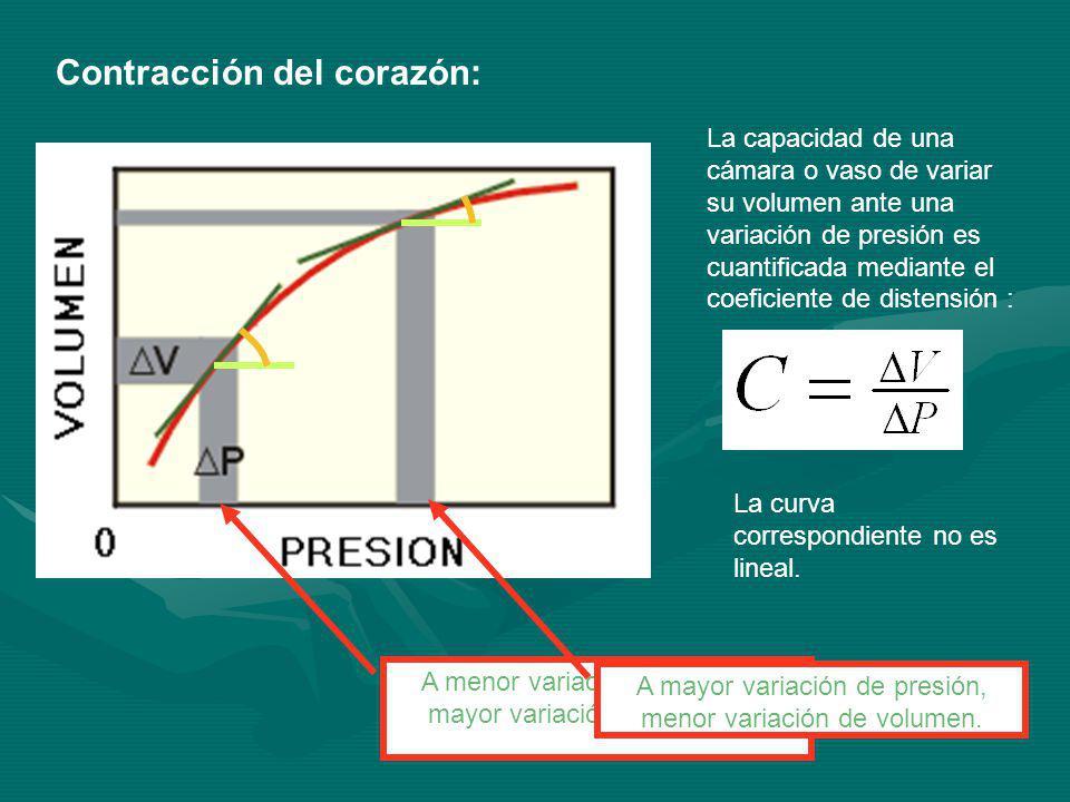 Contracción del corazón: La capacidad de una cámara o vaso de variar su volumen ante una variación de presión es cuantificada mediante el coeficiente de distensión : La curva correspondiente no es lineal.