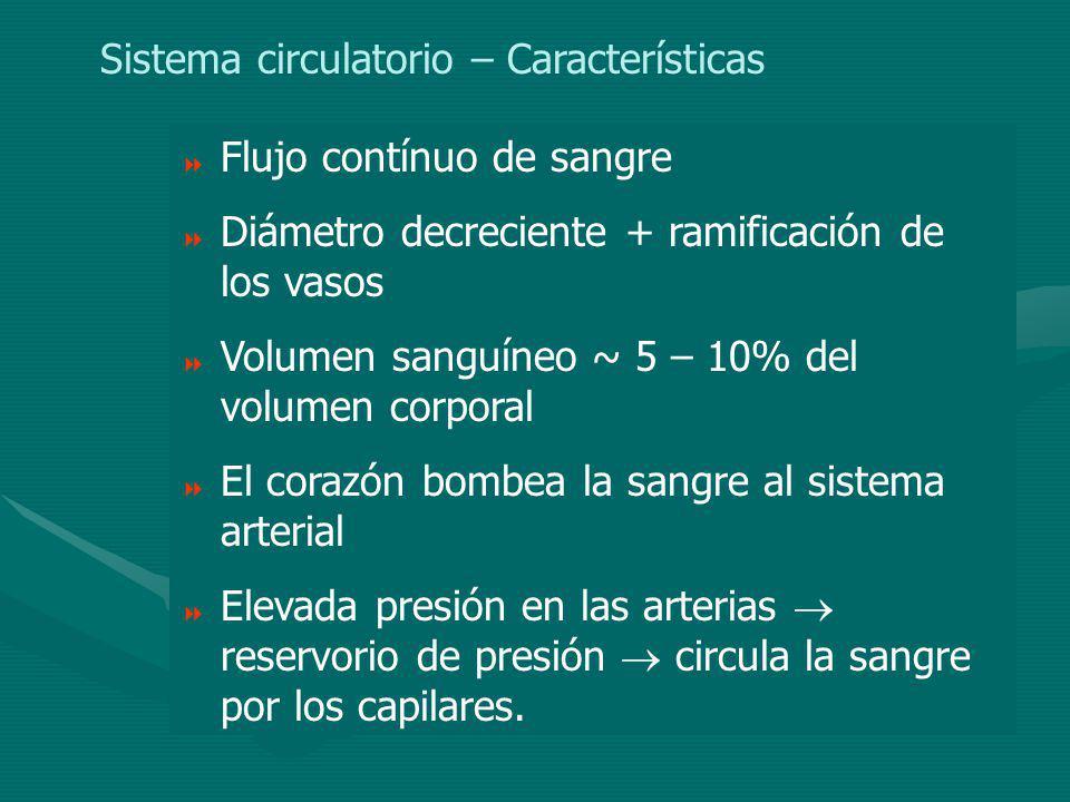 Para líquidos en movimiento: S1S1 S2S2 v1v1 v2v2 Volumen 1 = Volumen 2 ECUACION DE CONTINUIDAD Se obtiene la ECUACION DE CONTINUIDAD.