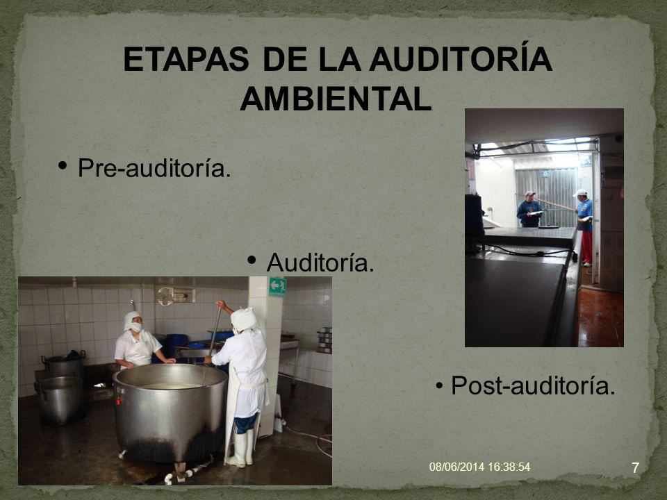 PRE-AUDITORIA Definición del alcance (técnico, jurídico, etc.).