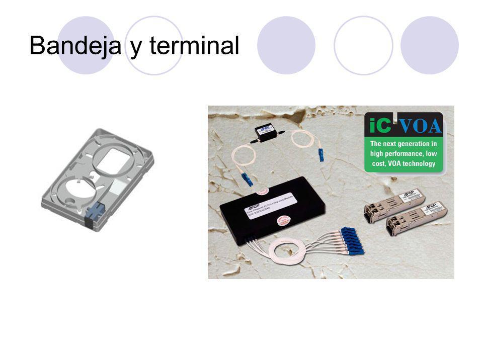 Bandeja y terminal