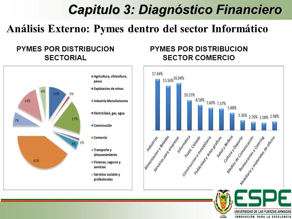 Capitulo 3: Diagnóstico Financiero Análisis Externo: Pymes dentro del sector Informático PYMES POR DISTRIBUCION SECTORIAL PYMES POR DISTRIBUCION SECTO