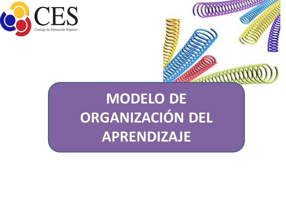 MODELO DE ORGANIZACIÓN DEL APRENDIZAJE