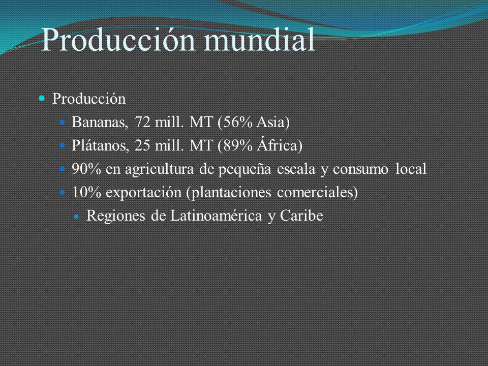 Producción mundial Producción Bananas, 72 mill. MT (56% Asia) Plátanos, 25 mill. MT (89% África) 90% en agricultura de pequeña escala y consumo local