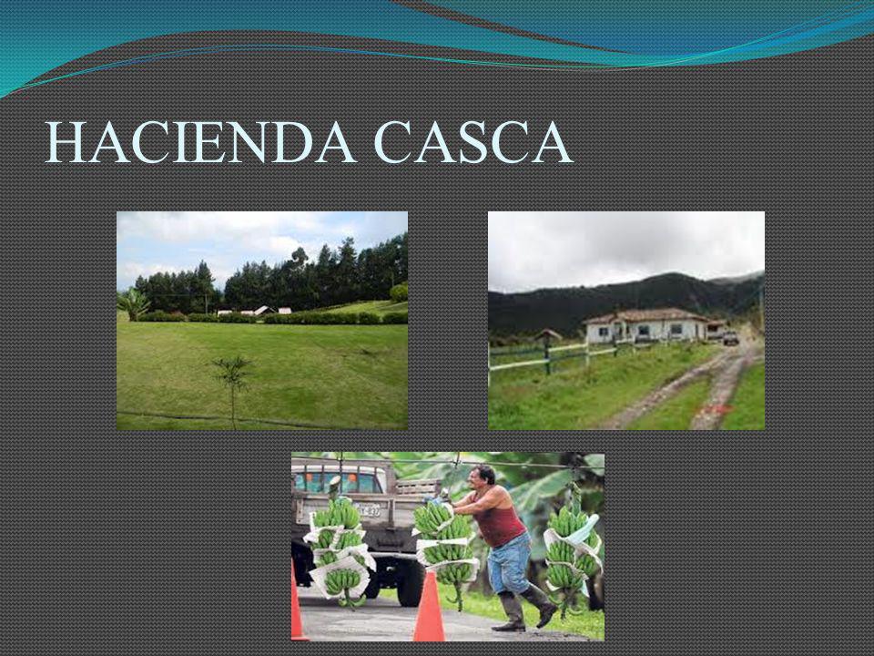 HACIENDA CASCA