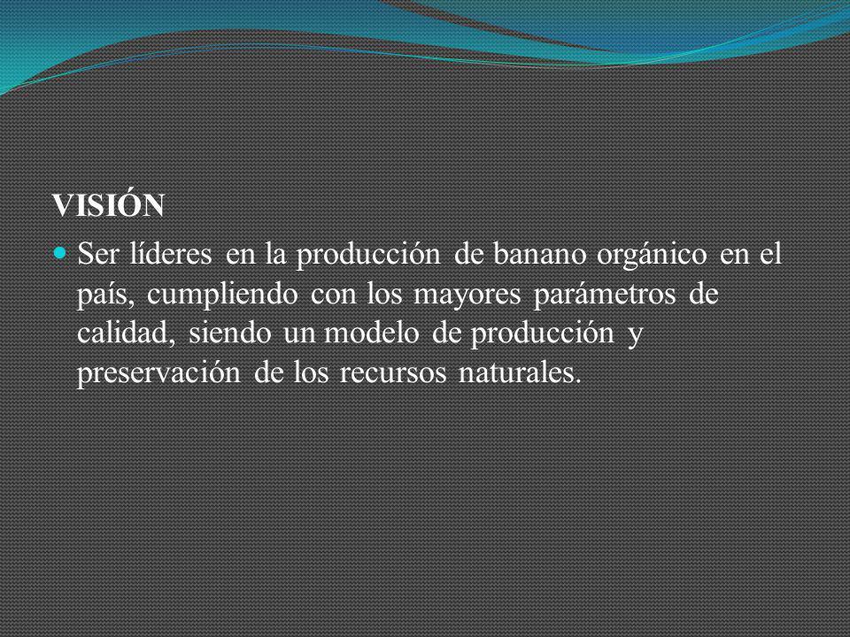 VISIÓN Ser líderes en la producción de banano orgánico en el país, cumpliendo con los mayores parámetros de calidad, siendo un modelo de producción y