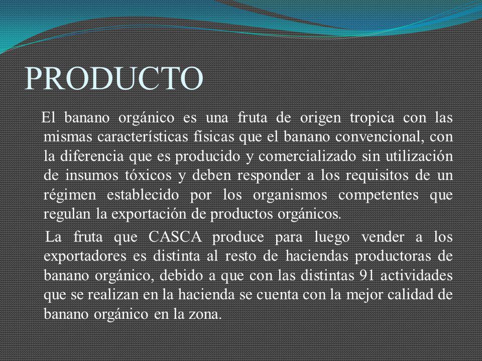 PRODUCTO El banano orgánico es una fruta de origen tropica con las mismas características físicas que el banano convencional, con la diferencia que es