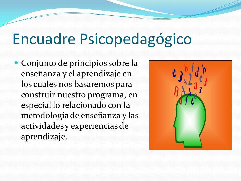 Encuadre Psicopedagógico Conjunto de principios sobre la enseñanza y el aprendizaje en los cuales nos basaremos para construir nuestro programa, en es
