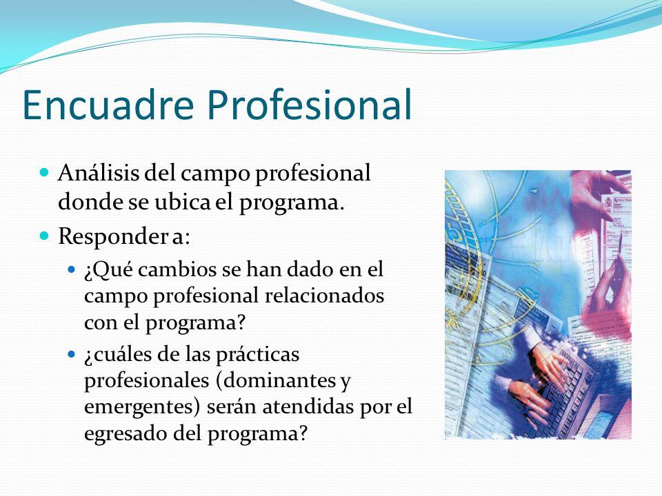 Encuadre Profesional Análisis del campo profesional donde se ubica el programa. Responder a: ¿Qué cambios se han dado en el campo profesional relacion