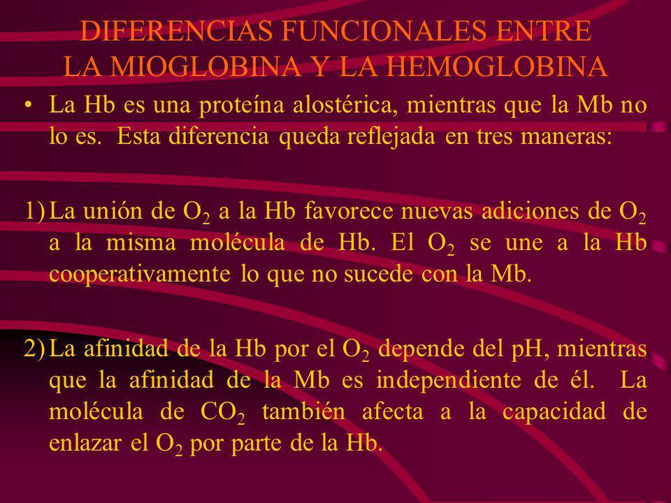 Coinciden en 24 de las 141 posiciones por lo que secuencias distintas de aa pueden determinar estructuras tridimensionales similares La estructura den