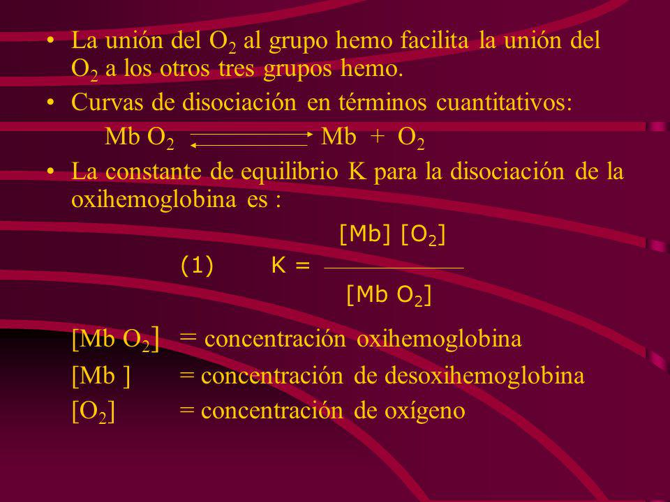 2.- La curva de disociación del oxígeno: Mioglobina tiene forma hiperbólica Hemoglobina tiene forma sigmoidea En términos moleculares forma sigmoidea