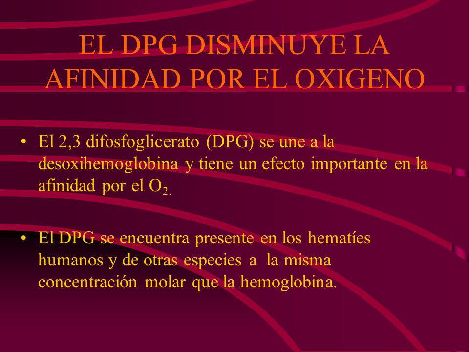 disociación CO 2 + H 2 O H 2 CO 3 HCO 3 - + H + anhidrasa carbónica a pH sanguíneo El H + en su mayor parte es reabsorbido por la desoxihemoglobina de