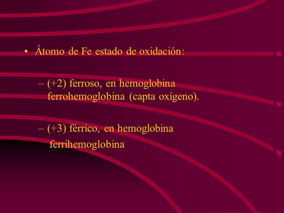 Átomo de Fe estado de oxidación: –(+2) ferroso, en hemoglobina ferrohemoglobina (capta oxígeno).