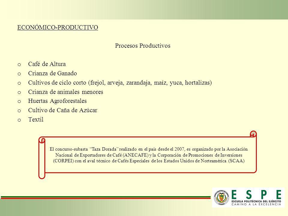ECONÓMICO-PRODUCTIVO Procesos Productivos o Café de Altura o Crianza de Ganado o Cultivos de ciclo corto (frejol, arveja, zarandaja, maíz, yuca, horta