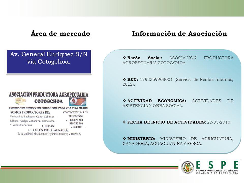 Área de mercadoInformación de Asociación Av. General Enríquez S/N vía Cotogchoa. Razón Social: ASOCIACION PRODUCTORA AGROPECUARIA COTOGCHOA RUC: 17922