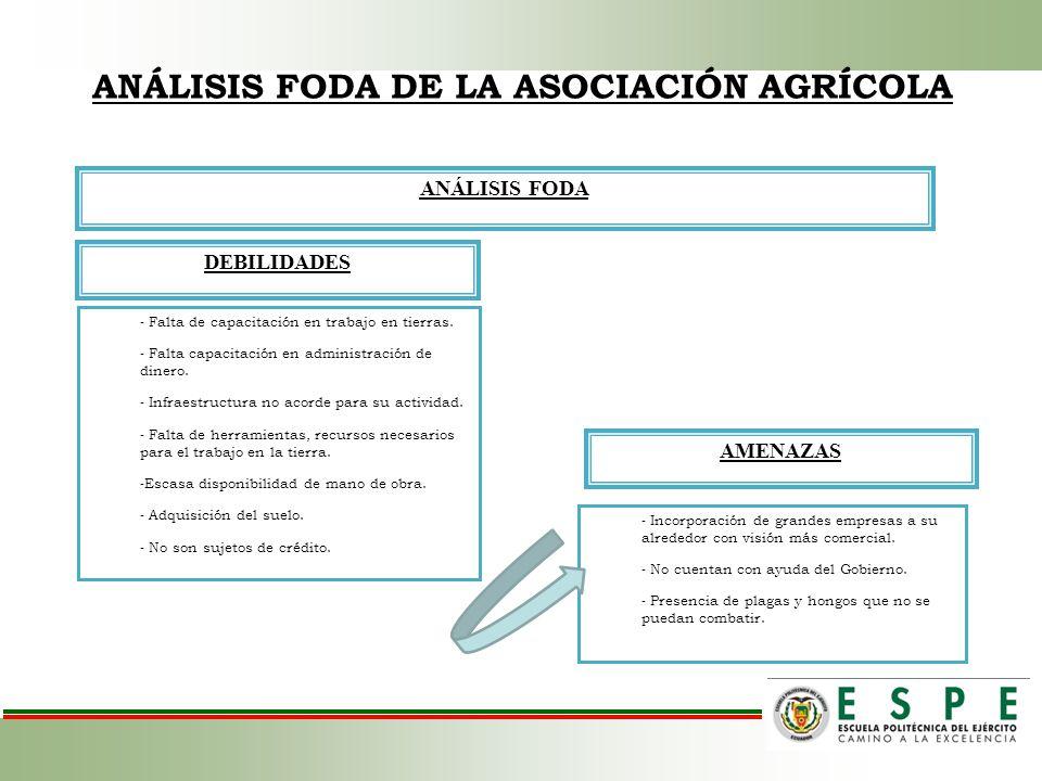 ANÁLISIS FODA DEBILIDADES AMENAZAS - Falta de capacitación en trabajo en tierras. - Falta capacitación en administración de dinero. - Infraestructura