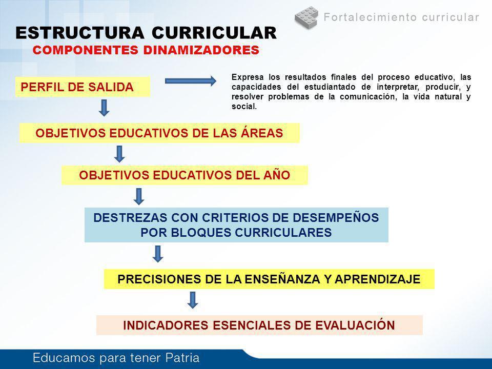 ESTRUCTURA CURRICULAR COMPONENTES DINAMIZADORES PERFIL DE SALIDA OBJETIVOS EDUCATIVOS DE LAS ÁREAS OBJETIVOS EDUCATIVOS DEL AÑO DESTREZAS CON CRITERIO