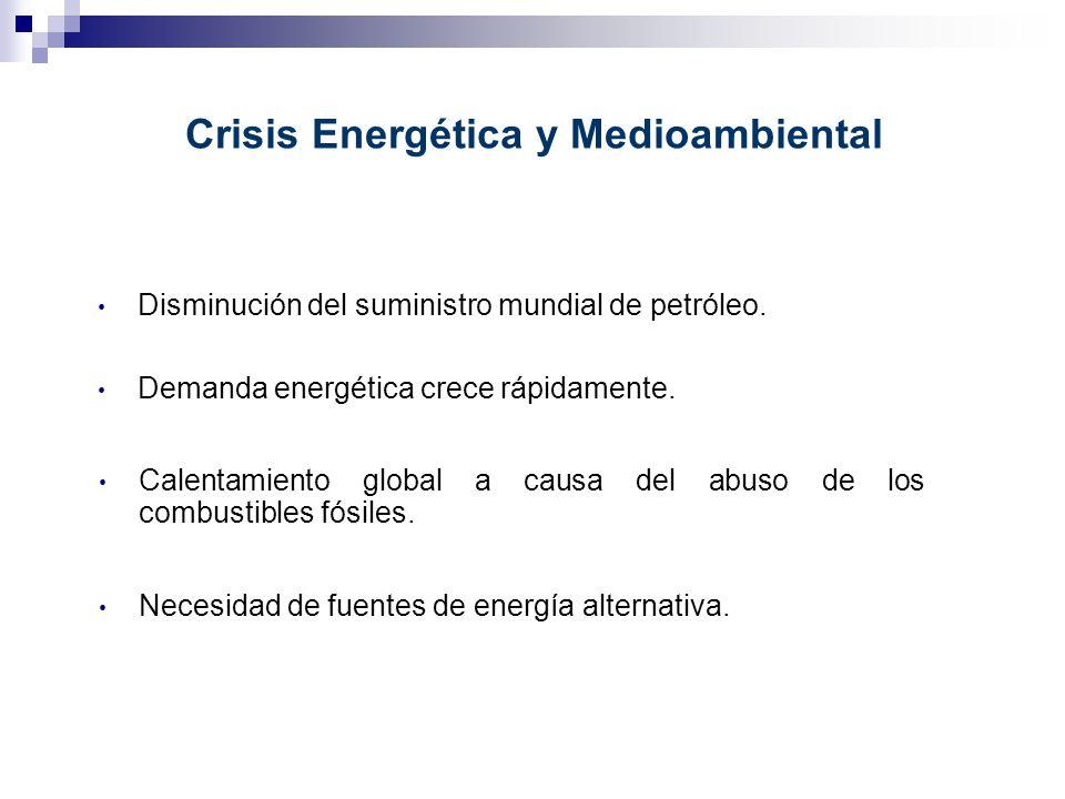 Crisis Energética y Medioambiental Disminución del suministro mundial de petróleo. Demanda energética crece rápidamente. Calentamiento global a causa