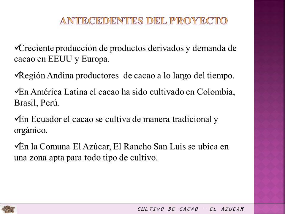Creciente producción de productos derivados y demanda de cacao en EEUU y Europa. Región Andina productores de cacao a lo largo del tiempo. En América