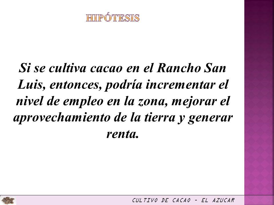 Si se cultiva cacao en el Rancho San Luis, entonces, podría incrementar el nivel de empleo en la zona, mejorar el aprovechamiento de la tierra y gener