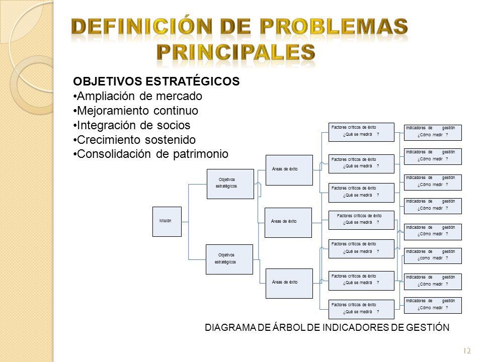 12 OBJETIVOS ESTRATÉGICOS Ampliación de mercado Mejoramiento continuo Integración de socios Crecimiento sostenido Consolidación de patrimonio DIAGRAMA