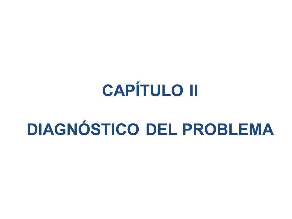 CAPÍTULO II DIAGNÓSTICO DEL PROBLEMA